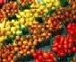7-20-homespun-tomatoes