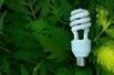 energy_efficient_bulb