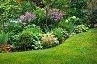garden_landscape