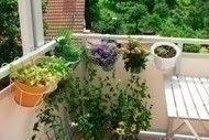 small_space_garden