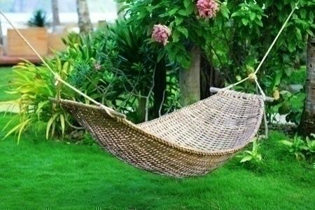 tropical_garden