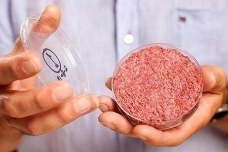 test-tube_hamburger