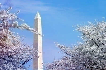 Washington_monument_spring
