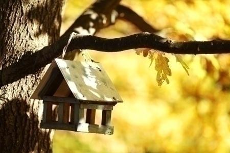 birdhouse_BH&G