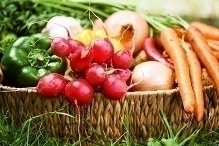 fall_vegetables