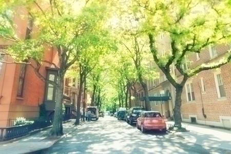 urban_trees