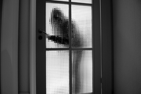 home_security(2)