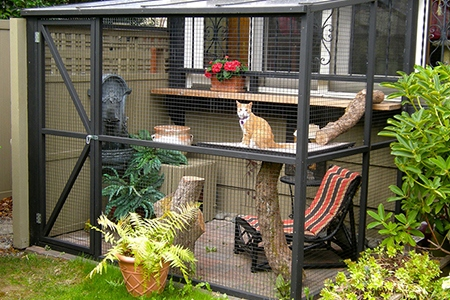 Great Do You Have An Indoor Kitty Dying To Escape The Confines Of Your Home?  Expand Your Catu0027s Territory With A Brand New Catio U2013 A Patio For Your Cat!