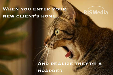 8 Real Estate Cat Memes to Live By