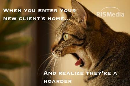 cat_meme_1_slider
