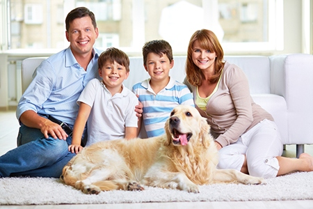 Helping Clients with Pets Find the Perfect Home