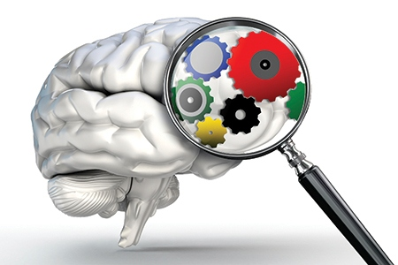 cog wheels word on magnifying glass and human brain