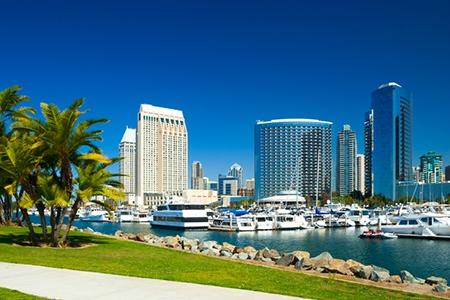 San Diego skyline with palm trees and marina