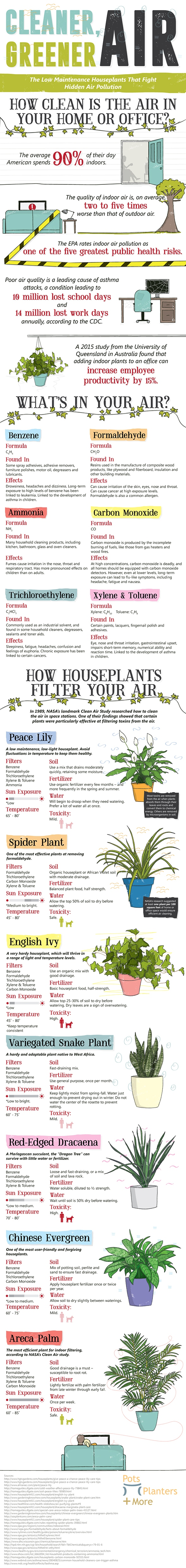 Clean_air_plants_infographic