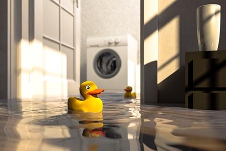 Home Warranties: The Best Bonus Money Can Buy