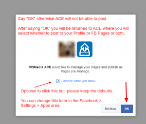 Facebook Confirm ACE Can Post
