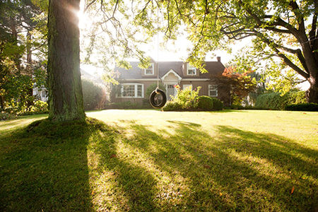 Preserve Curb Appeal during Summer Storm Season