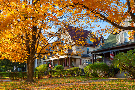 Sue Yannaccone: Fall Selling Season Highlights