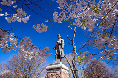 Explore America's Neighborhoods: Wooster Square, New Haven, Conn.