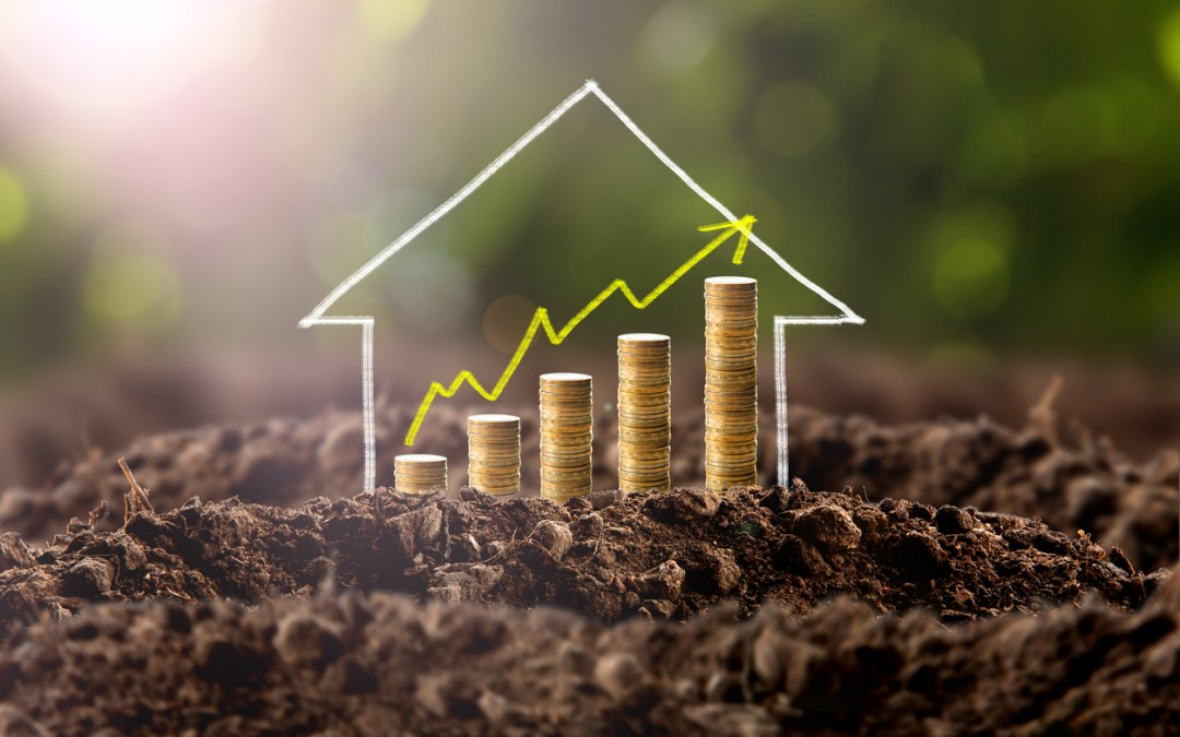 Eight Ways to Boost Your Home's Value