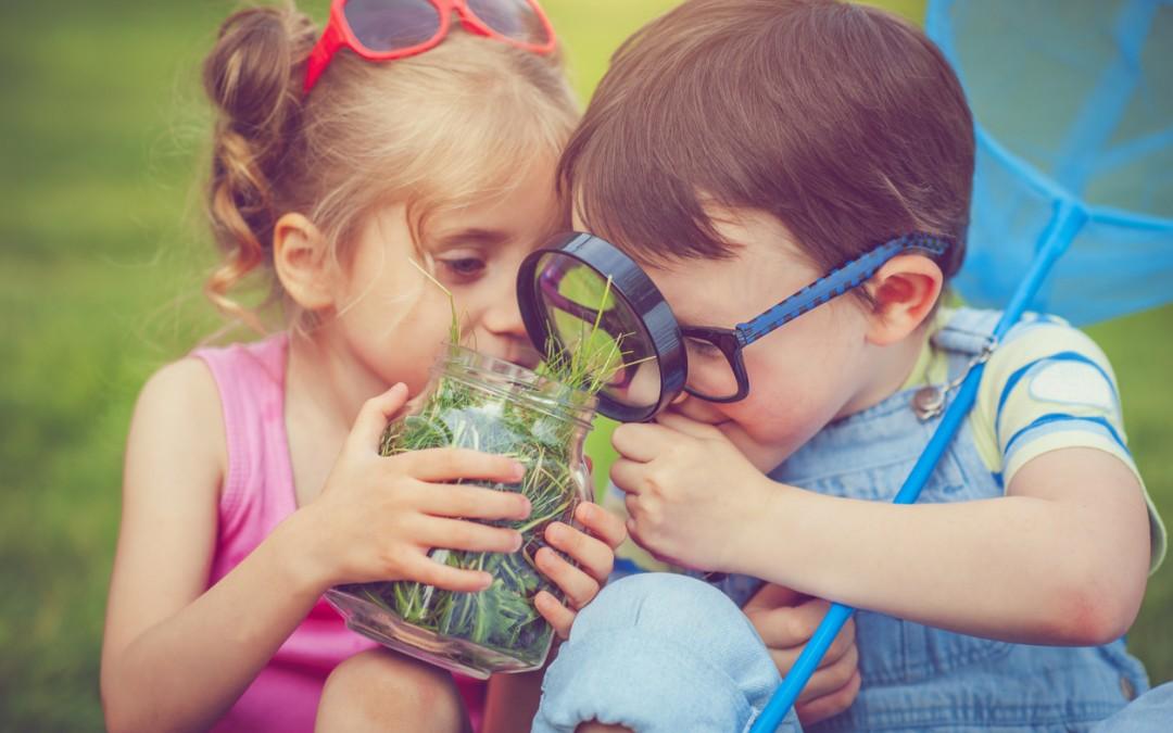 5 Helpful Ways to Celebrate Earth Day