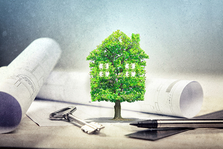 The Green Movement in Sustainable Housing