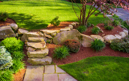 Simple Landscaping Tips for a Tidier Yard