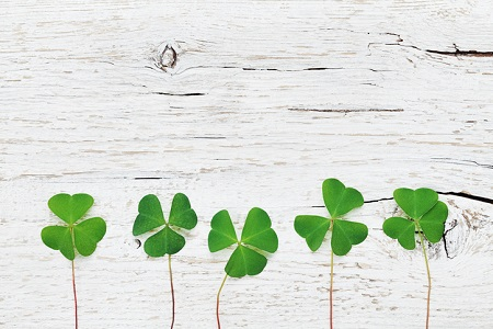 5 Ways to Green Your Home for St. Paddy's