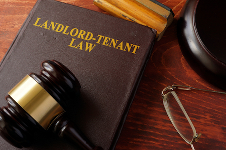 Questions to Expect from a Landlord