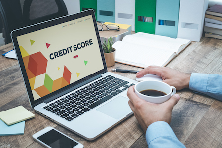 A Background on Credit Scoring Models