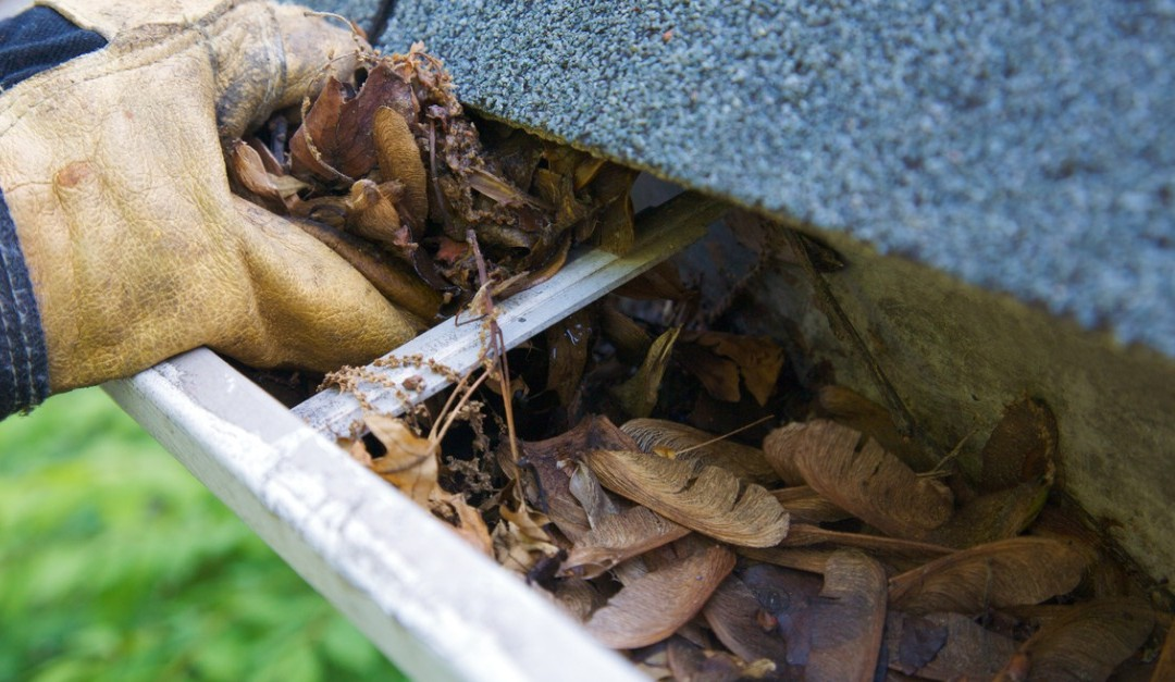 Gutter Maintenance for a Smooth Sale