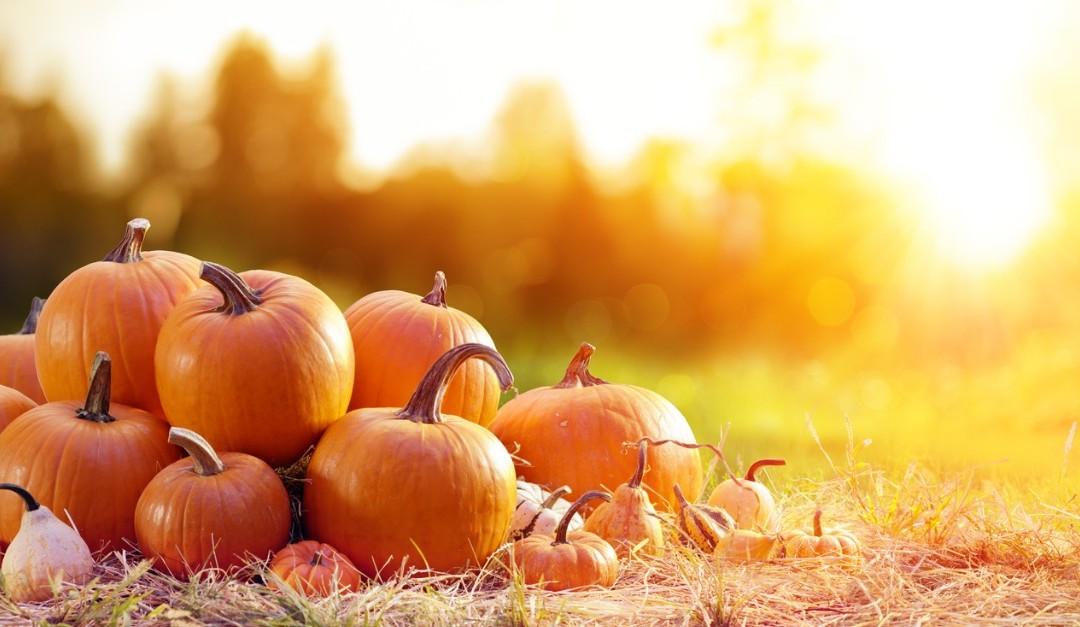 4 Pumpkin Ideas (That Don't Involve Pie)