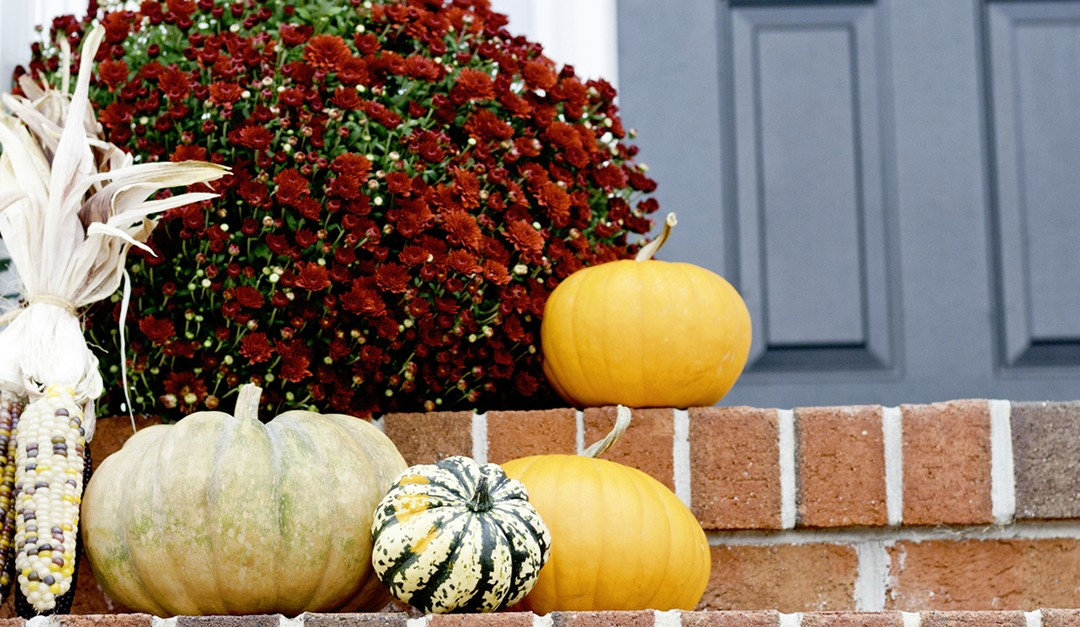 Getting Your Clients' Homes Ready for the Fall