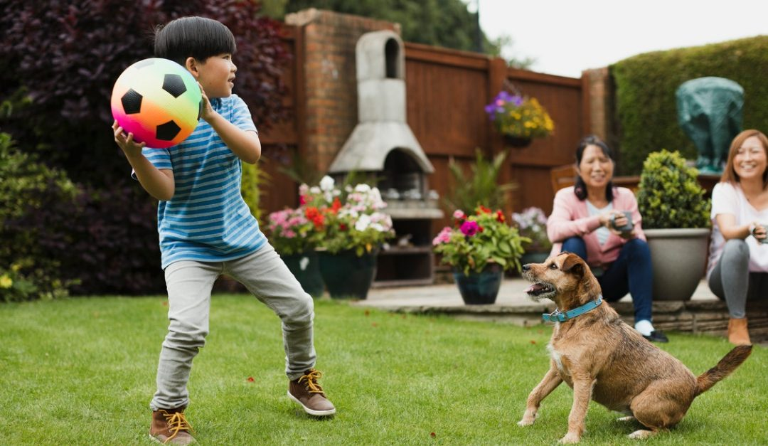 Adding a Dog to the Family? Here Are Some Expenses to Consider