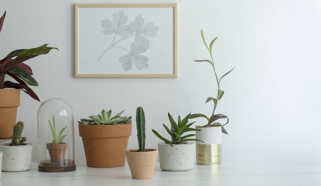5 Ways to Show Love to Your Home This February