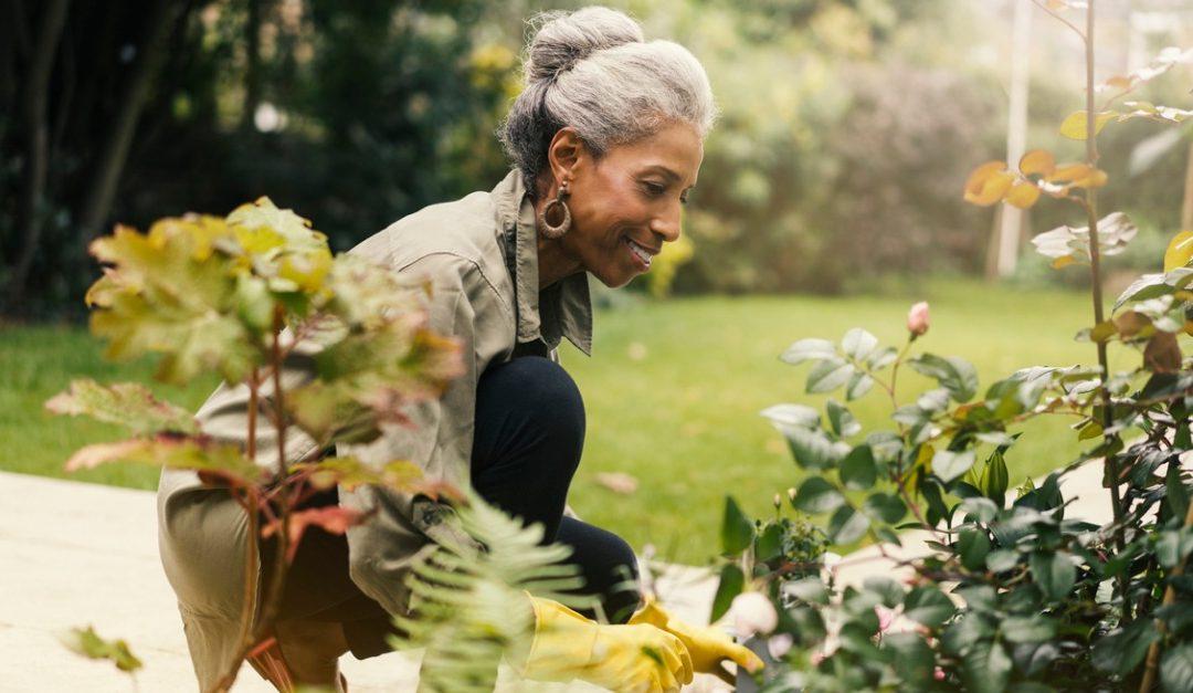 7 Tips for Becoming a Better Gardener