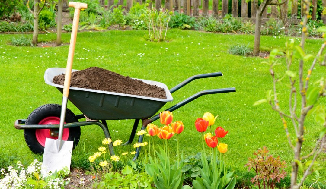 Would Improving the Yard Help Your House Sell Faster?