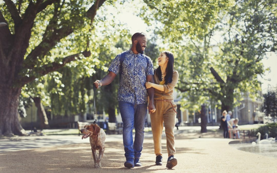 Neighborhood Amenities to Look Into Before Purchasing a Home
