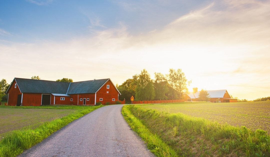 Pros and Cons of Choosing a House in a Rural Area