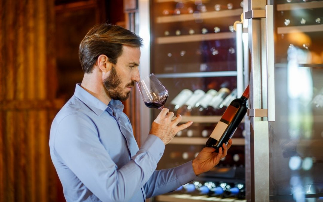 The Best Wine Refrigerators for Your Vino Collection
