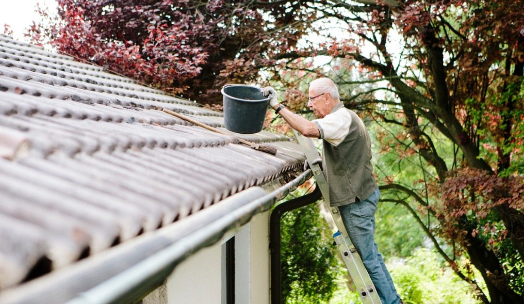 7 Spring Maintenance Musts for Your Home