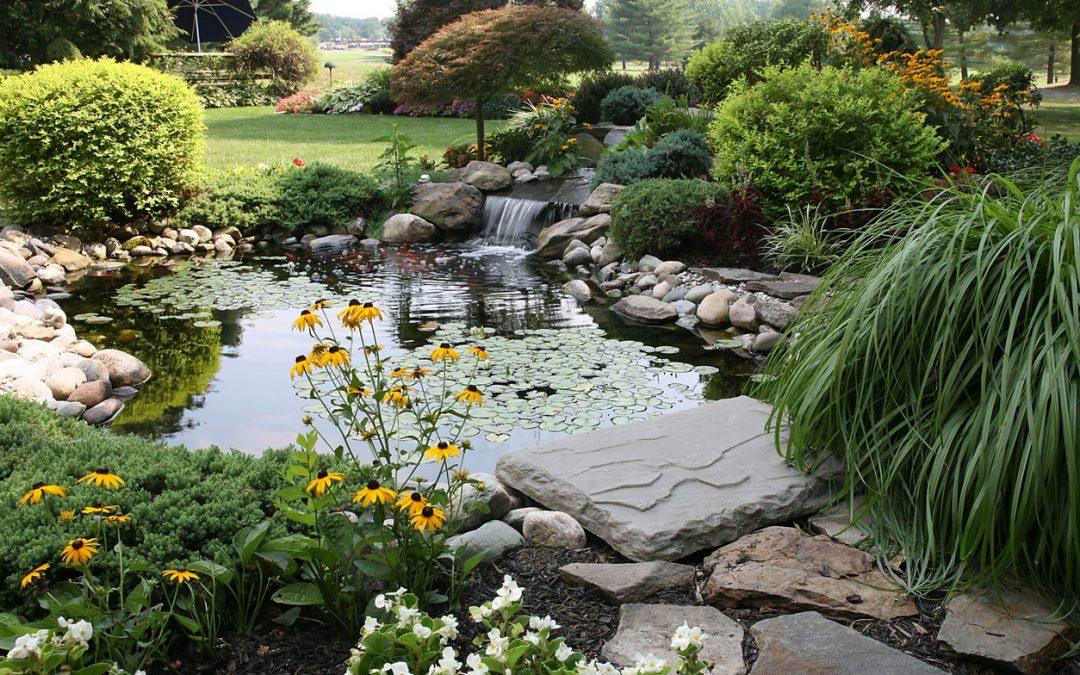 9 Ways to Beautify Your Backyard