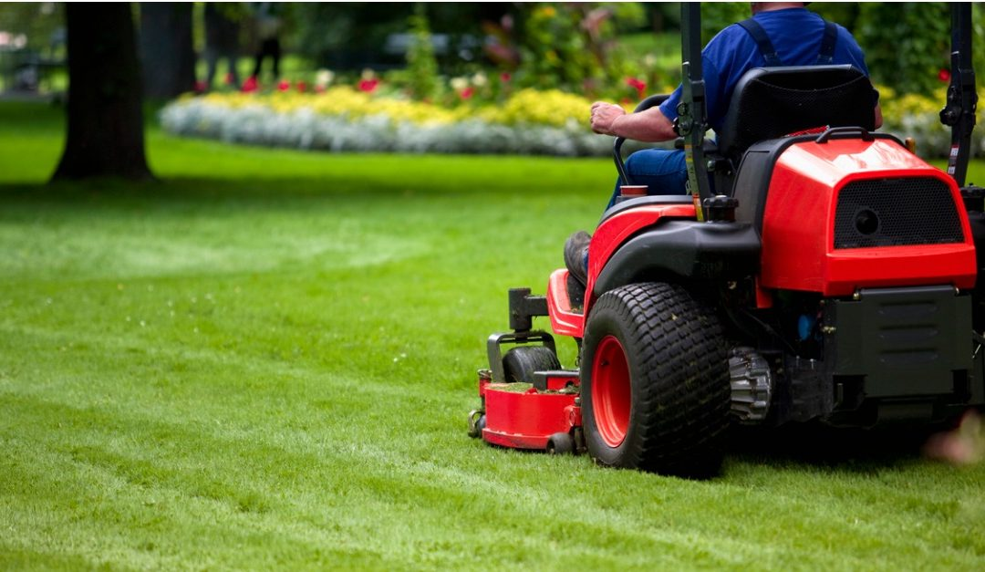 Should You Handle Lawn Care Yourself or Hire a Landscaper?