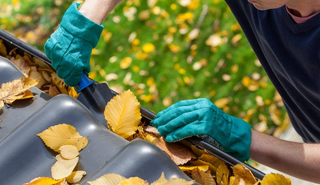 Frequently Overlooked Home-Maintenance Tasks