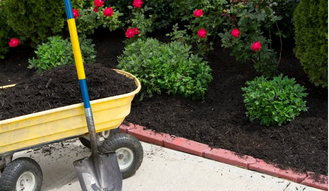 5 Quick Outdoor Fixes for Home Upkeep