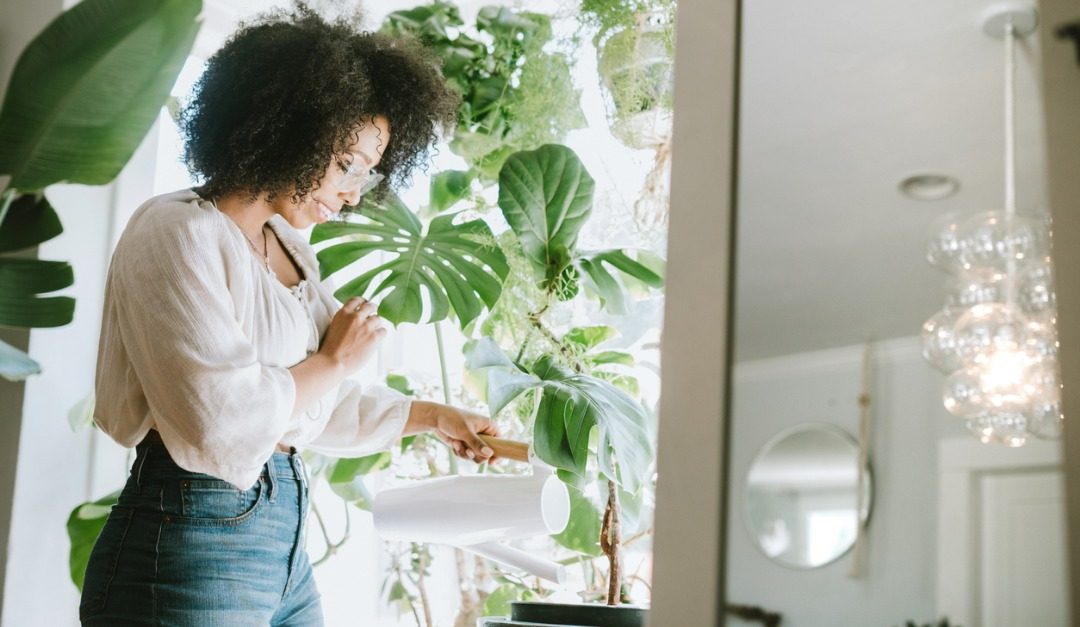 Why Plants May Be Good for Improving Your Mood