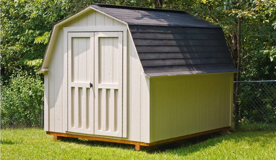 How to Keep Animals and Insects out of Your Shed