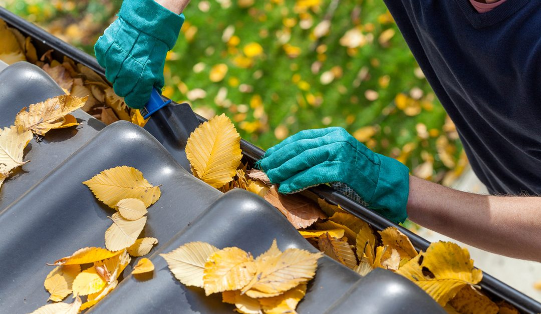 7 Fall Home Care Projects to Tackle This Weekend