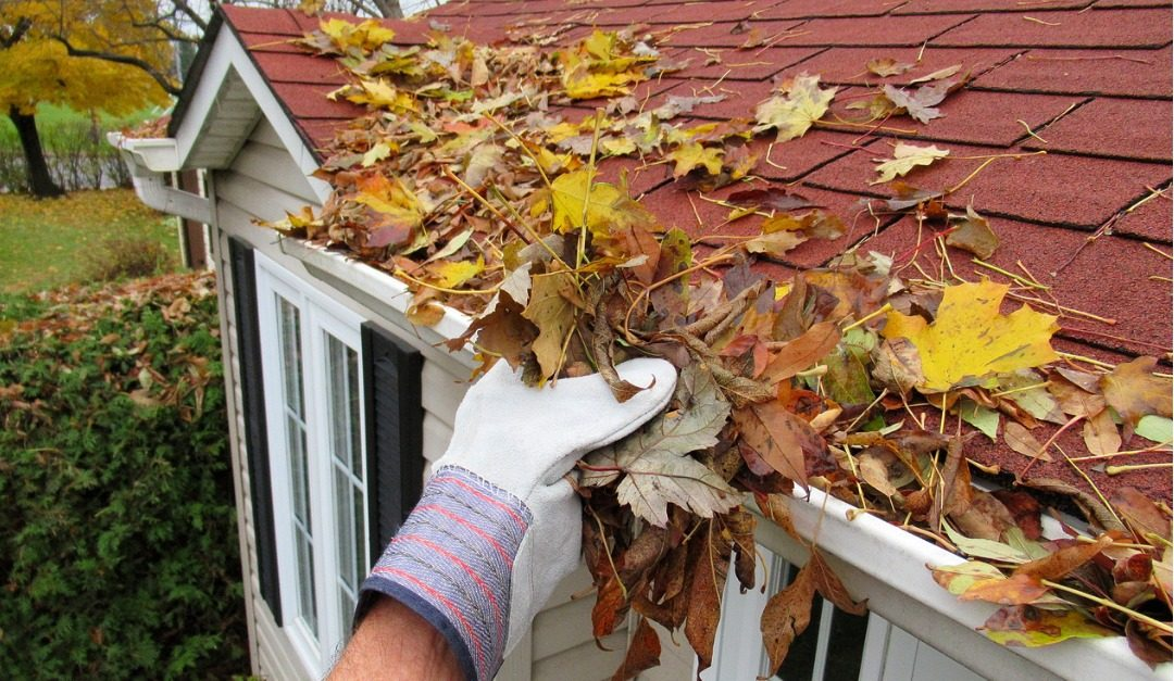 Things You Should Do in the Summer and Fall to Prepare Your Home for Winter