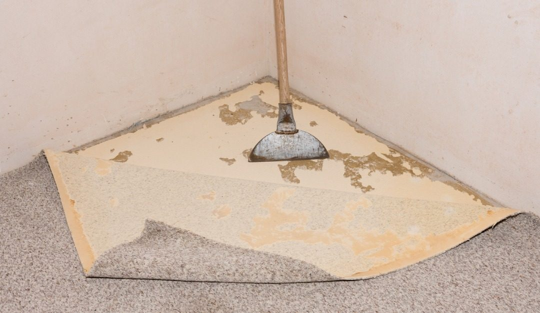 Getting Rid of Carpet Glue When Renovating